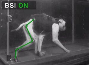 Macaco volta a andar com implante no cérebro